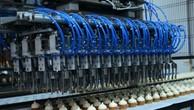 Công ty chiếm thị phần kem lớn nhất Việt Nam lên sàn UpCOM
