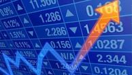 Cổ phiếu NEDI 2 tăng trần sau quý III khởi sắc