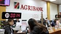Agribank rao bán Công ty Cho thuê tài chính I