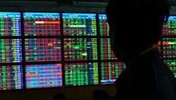 Tạo cung cầu giả HCD, một nhà đầu tư bị phạt 550 triệu đồng