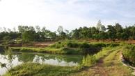 Khó khăn giải quyết sai phạm  đất nông, lâm trường ở Hà Nội