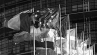 Biện pháp chuyển đổi trong FTA giữa Trung Mỹ và EU