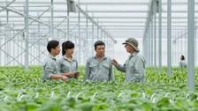 Để nông nghiệp Việt Nam cất cánh