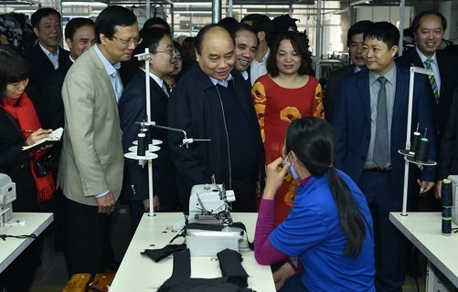 Thủ tướng: Tuyên Quang phải là hình mẫu về kinh tế lâm nghiệp - ảnh 2
