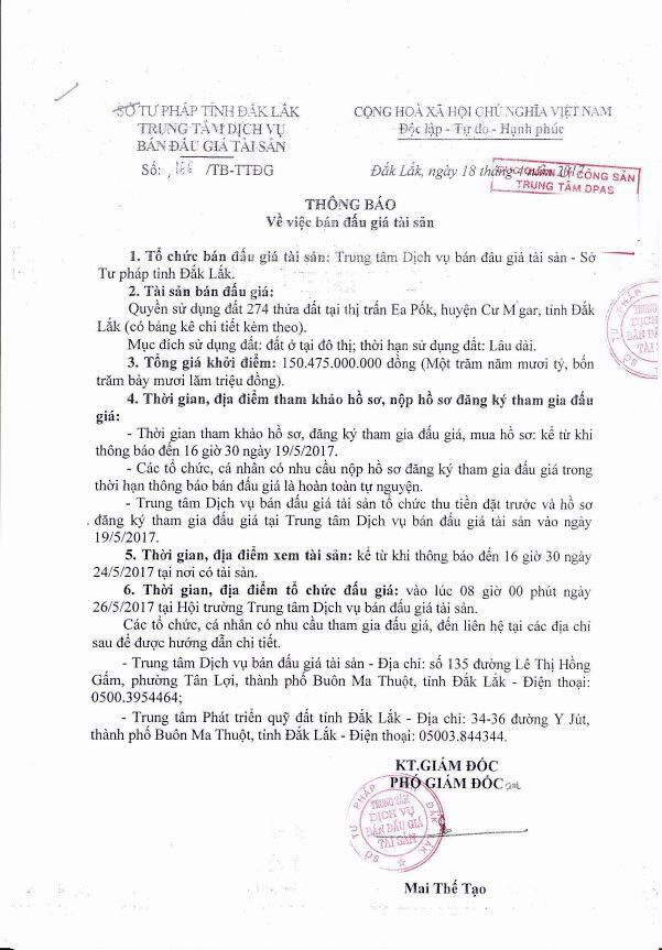Đấu giá quyền sử dụng đất tại huyện Cư M gar, Đắk Lắk - ảnh 1