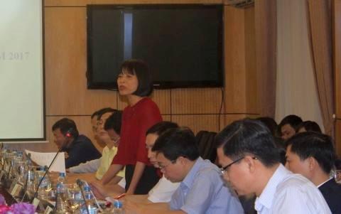 Bà Nguyễn Thị Mai phát biểu tại buổi họp báo.