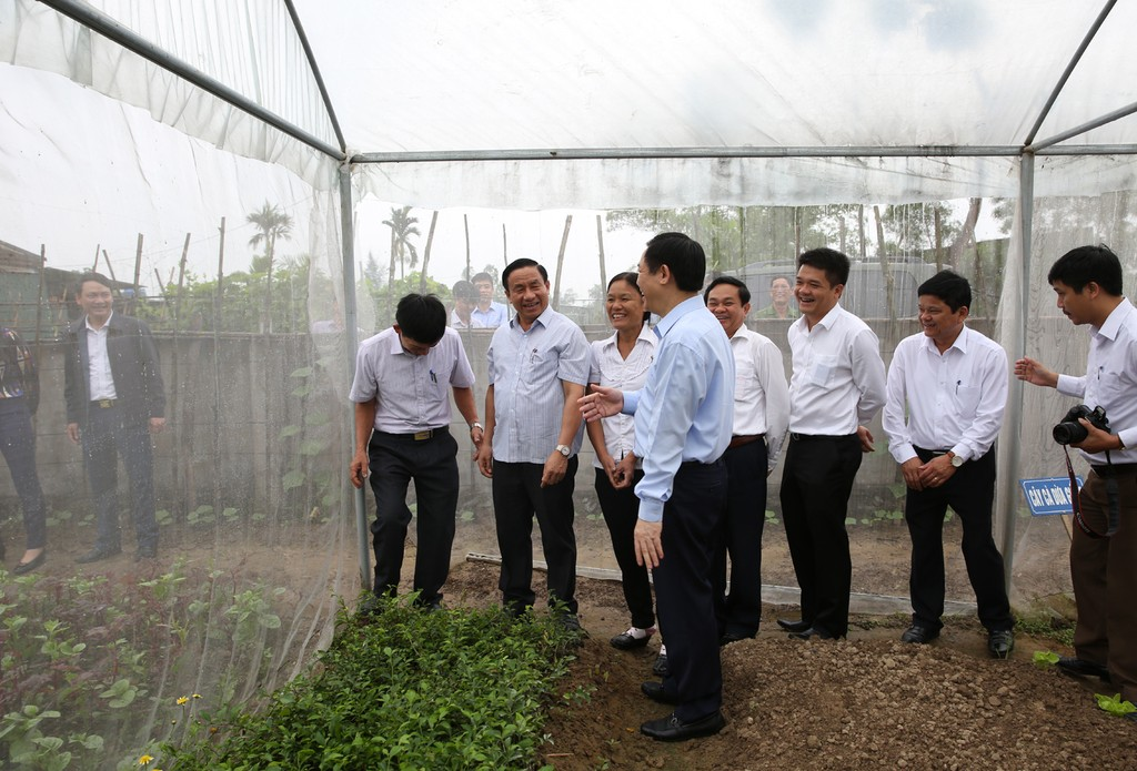 Phó Thủ tướng Vương Đình Huệ thăm nông thôn mới kiểu mẫu Hà Tĩnh - ảnh 2