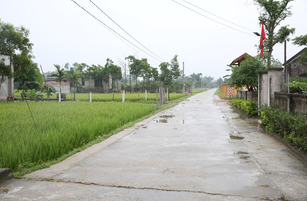 Phó Thủ tướng Vương Đình Huệ thăm nông thôn mới kiểu mẫu Hà Tĩnh - ảnh 4
