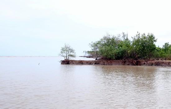 Phó Thủ tướng kiểm tra tình trạng sạt lở, xâm thực bờ biển tại ĐBSCL - ảnh 1