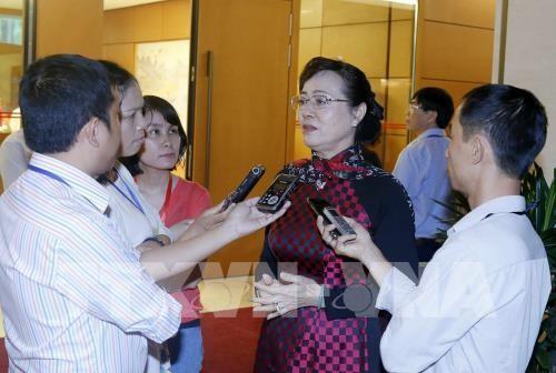 Đại biểu Quốc hội Thành phố Hồ Chí Minh Nguyễn Thị Quyết Tâm trả lời phỏng vấn báo chí bên lề Quốc hội. Ảnh: TTXVN