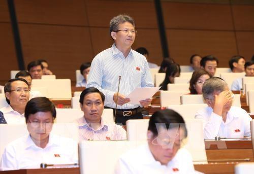 Bên lề Quốc hội: Chất vấn thành viên Chính phủ về định hướng phát triển nông nghiệp - ảnh 1