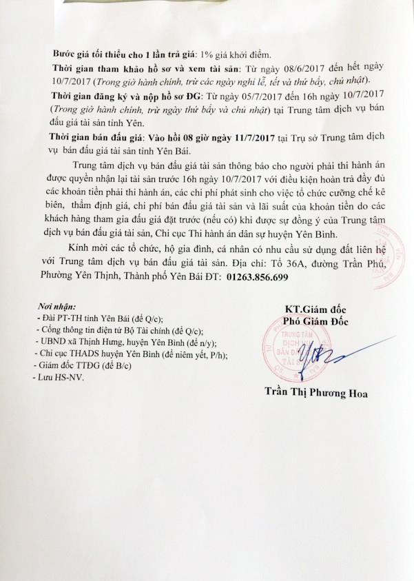 Đấu giá quyền sử dụng đất tại huyện Yên Bình, Yên Bái - ảnh 2