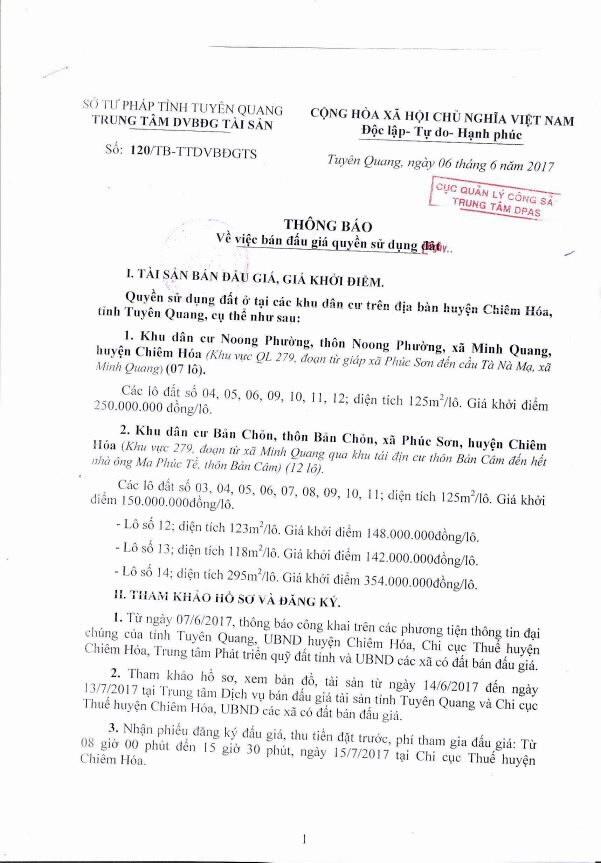 Đấu giá quyền sử dụng đất tại huyện Chiêm Hóa, Tuyên Quang - ảnh 1