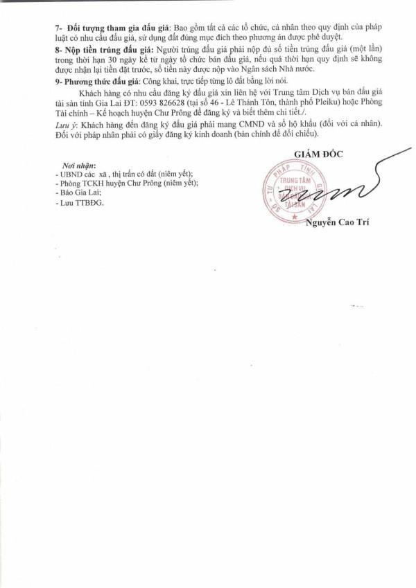 Đấu giá quyền sử dụng đất huyện Chư Prông, Gia Lai - ảnh 2
