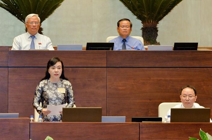 Toàn cảnh Bộ trưởng Nguyễn Thị Kim Tiến trả lời chất vấn - ảnh 1