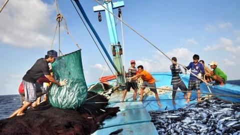 Dự thảo Luật Thủy sản (sửa đổi) là căn cứ pháp lý quan trọng trong việc bảo vệ nguồn lợi thủy sản, nuôi trồng, khai thác thủy sản. Ảnh minh họa