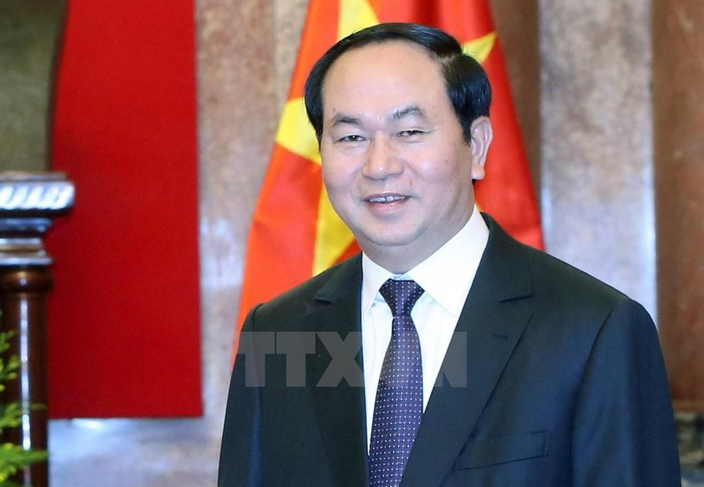 Chủ tịch nước Trần Đại Quang trả lời phỏng vấn báo chí Nga - ảnh 1