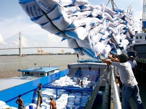 Xuất khẩu gạo thời gian qua tăng. Ảnh: TTXVN