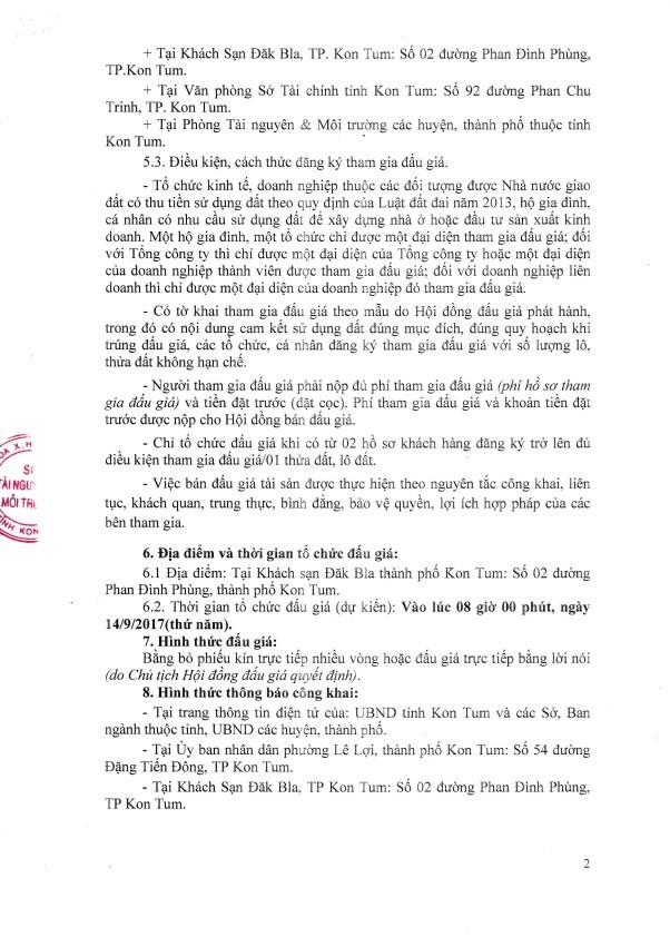 Đấu giá quyền sử dụng đất tại huyện Sa Thầy, Kon Tum - ảnh 2