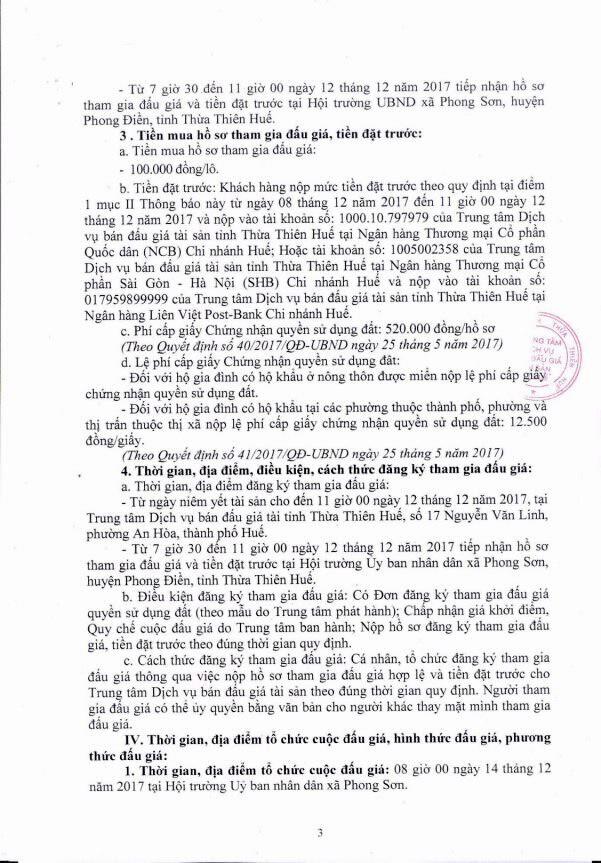 Đấu giá quyền sử dụng đất tại huyện Phong Điền, Thừa Thiên Huế - ảnh 3