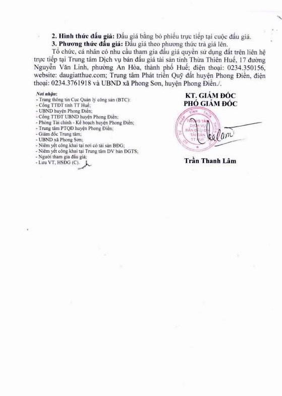 Đấu giá quyền sử dụng đất tại huyện Phong Điền, Thừa Thiên Huế - ảnh 4