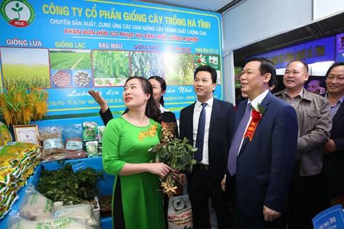 Phó Thủ tướng dự Lễ hội quảng bá cam Hà Tĩnh - ảnh 1