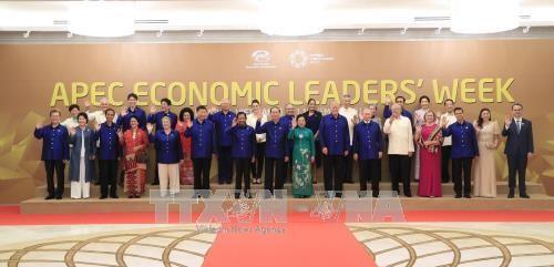 Năm APEC 2017: Mốc son mới trong tiến trình hội nhập quốc tế của Việt Nam - ảnh 1