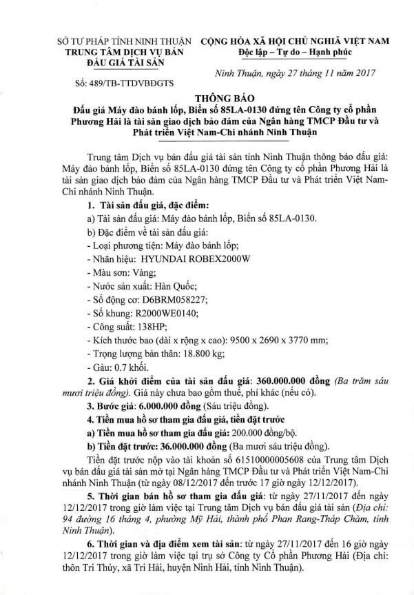 Đấu giá máy đào bánh lốp tại Ninh Thuận - ảnh 1