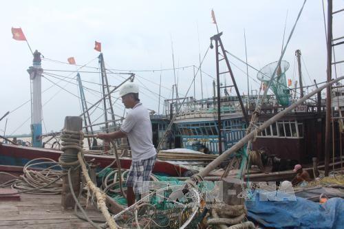 Đầu tư gần 10 tỷ đồng để nạo vét khu neo đậu tránh trú bão tại cảng cá Lạch Hới. Ảnh minh họa: -TTXVN