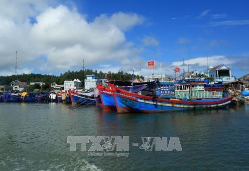 Ngân hàng gặp khó trong việc kiểm tra, giám sát tài sản đảm bảo tiền vay và nguồn thu nhập của ngư dân để trả nợ chương trình cho vay theo Nghị định 67. Ảnh minh họa: TTXVN