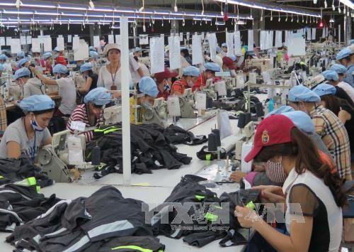 May hàng xuất khẩu tại Công ty Cổ phần Dệt May Huế. Ảnh: TTXVN