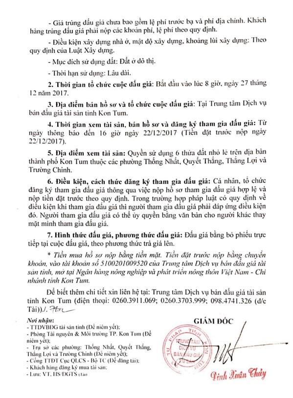 Đấu giá quyền sử dụng đất tại TP. Kon Tum, Kon Tum - ảnh 2