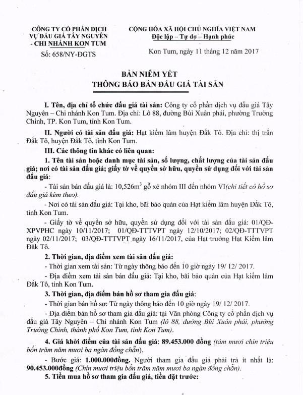 Đấu giá gỗ xẻ nhóm III đến VI tại Kon Tum - ảnh 1