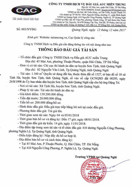 Đấu giá quyền sử dụng đất tại huyện Sơn Tịnh, Quảng Ngãi - ảnh 1