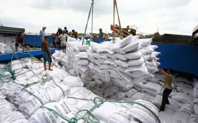 Hết tháng 11, cả nước vẫn cồn cỡ 811.000 tấn gạo trong kho của doanh nghiệp. Ảnh: VTV