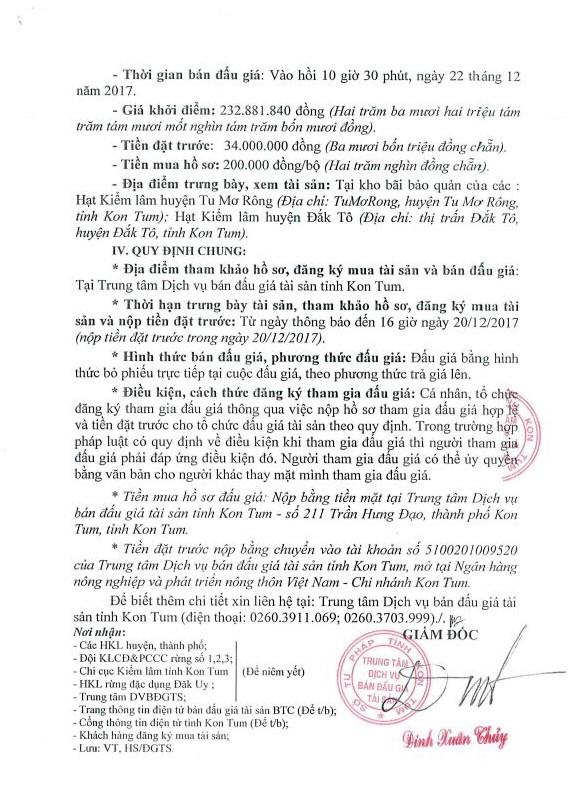 Đấu giá gỗ xẻ từ nhóm III đến nhóm VI tại Kon Tum - ảnh 3