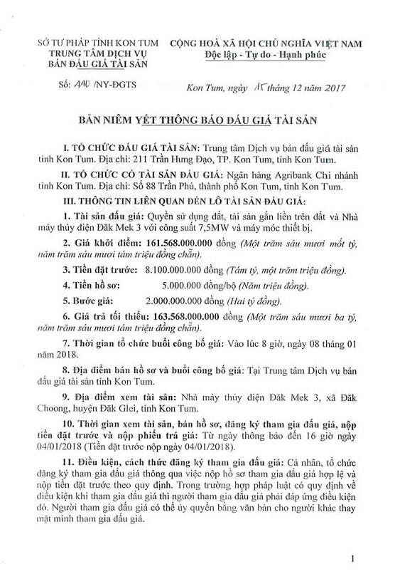 Đấu giá quyền sử dụng đất, TSGLTĐ và Nhà máy thủy điện Đắk Mek 3 tại Kon Tum - ảnh 1