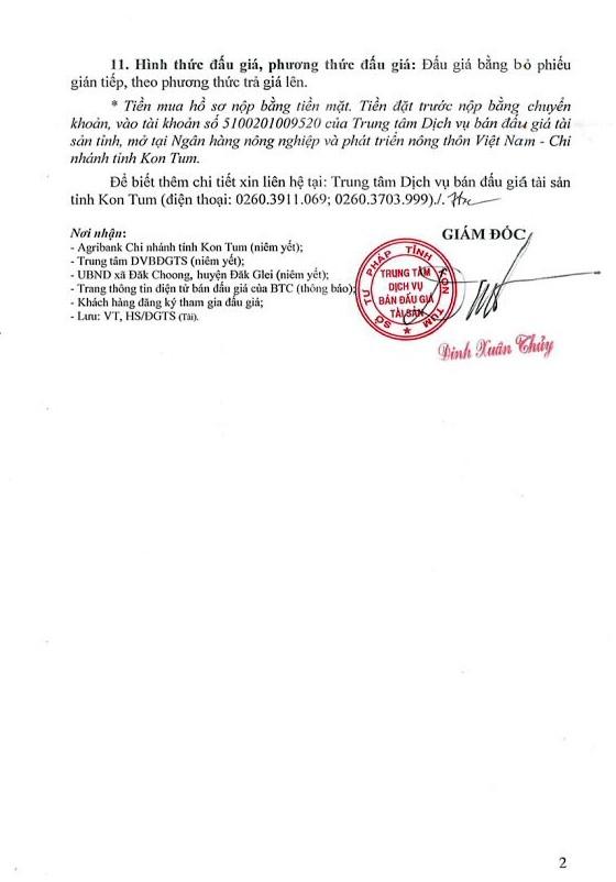 Đấu giá quyền sử dụng đất, TSGLTĐ và Nhà máy thủy điện Đắk Mek 3 tại Kon Tum - ảnh 2