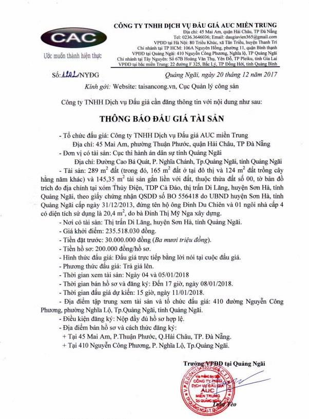 Đấu giá quyền sử dụng đất tại huyện Sơn Hà, Quảng Ngãi - ảnh 1