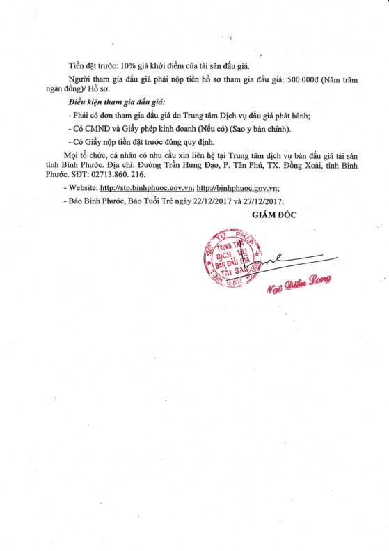 Đấu giá cây cao su thanh lý tại Bình Phước - ảnh 2