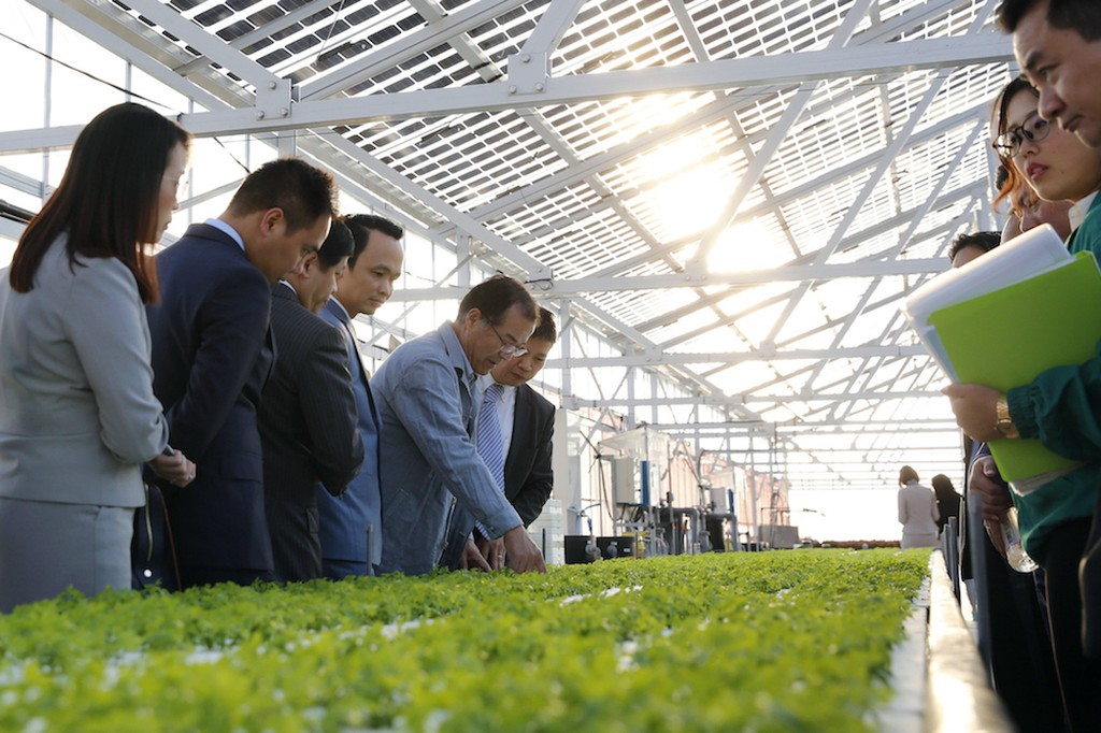 Mô hình trang trại nông nghiệp công nghệ cao của Farmdo