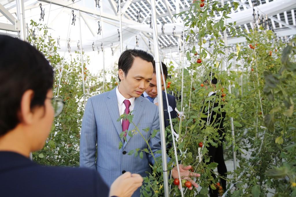 FLC - Farmdo bắt tay làm nông nghiệp và duyên cầu nối từ vị Đại sứ - ảnh 1