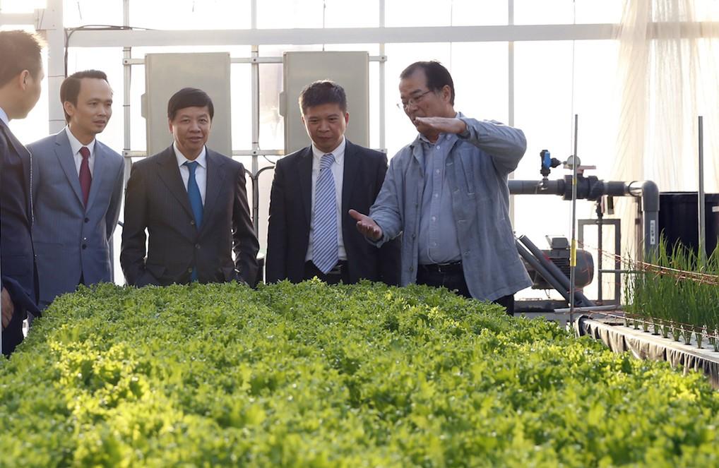 FLC - Farmdo bắt tay làm nông nghiệp và duyên cầu nối từ vị Đại sứ - ảnh 2