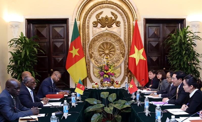 Tăng cường quan hệ Việt Nam-Cameroon - ảnh 1