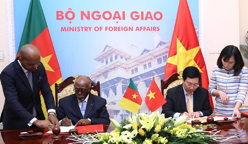 Tăng cường quan hệ Việt Nam-Cameroon - ảnh 2