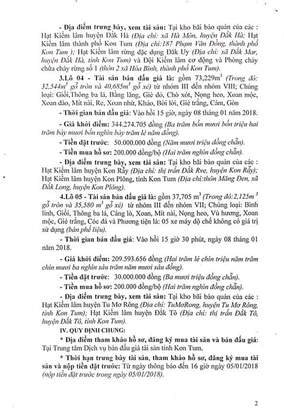 Đấu giá gỗ xẻ từ nhóm IIA đến nhóm VII tại Kon Tum - ảnh 2