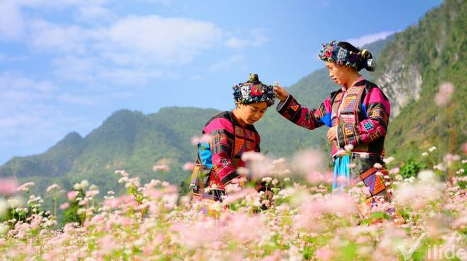 Đẩy mạnh đưa hình ảnh Hà Giang đến với du khách - Ảnh:hagiang.gov.vn