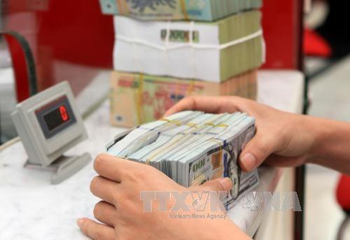 Giao dịch ngoại tệ tại Ngân hàng TMCP Phát triển Thành phố Hồ Chí Minh (HDBank) chi nhánh Hà Nội. Ảnh: TTXVN