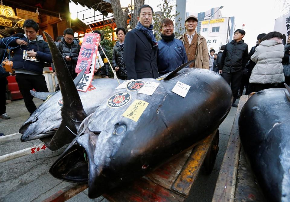 Cá ngừ 400 kg được đấu giá trước ngày đóng cửa chợ ở Nhật - ảnh 3
