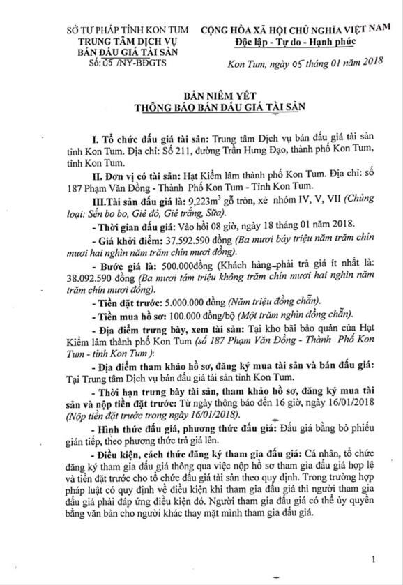Đấu giá gỗ tròn, xẻ nhóm IV, V, VII tại Kon Tum - ảnh 1